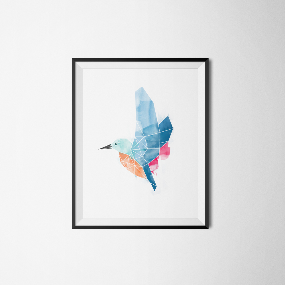 Kingfisher_on_Frame